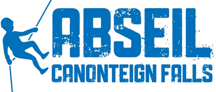 Logo Abseil for CHSW