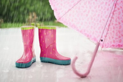 Wear your wellies day