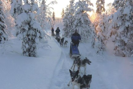 Drive a team of huskies over 200kms of beautiful, frozen landscape