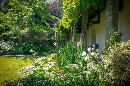 Open Garden Bodwannick Manor