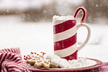 Christmas mug with candy cane
