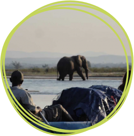 Join a Zambezi white water adventure for CHSW