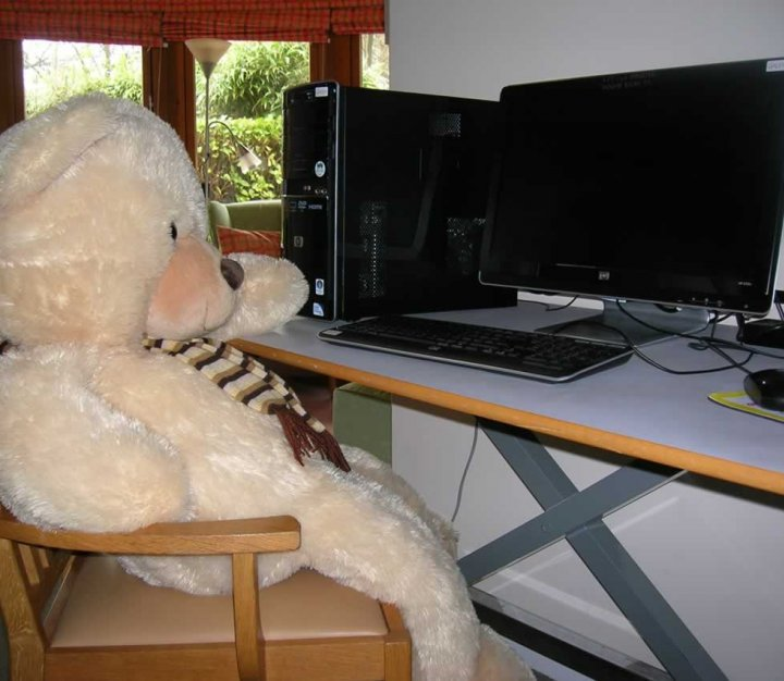 CHSW computer room with teddy bear